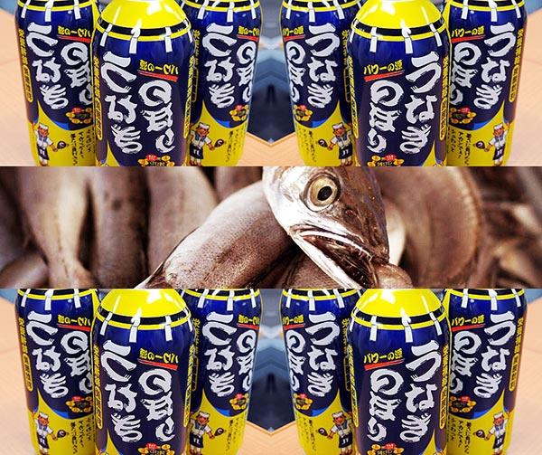 bevanda-succo-anguilla-unagi-nobori-usanze-giapponesi