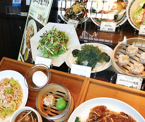 cibo-in-plastica-sampuru-usanze-giapponesi