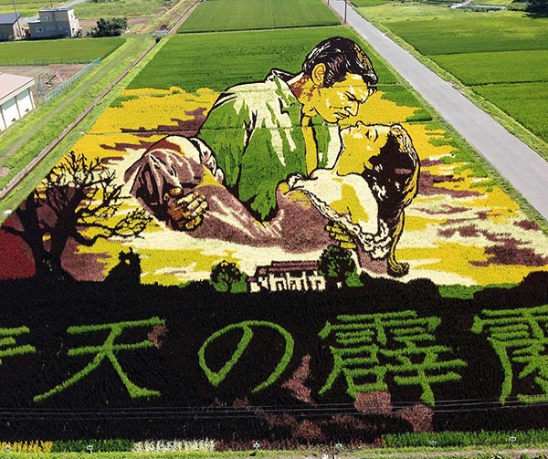 tanbo-art-usanze-giapponesi
