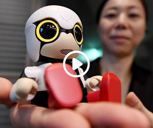 kirobo-mini-japanese-robot