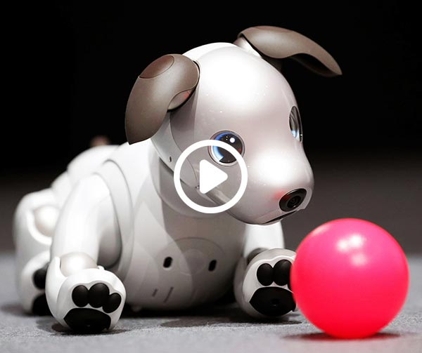 sony-aibo-japanese-dog-robot