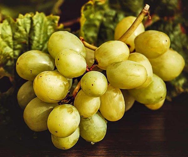 12-chicchi-uva-capodanno-usi-costumi-spagnoli