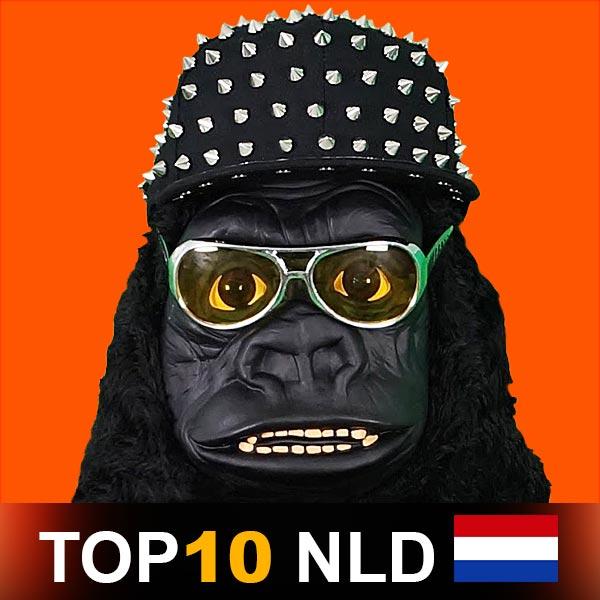 dj-olandesi-edm-disco-music