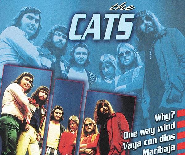 the-cats-dutch-pop-group