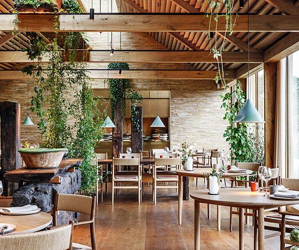 noma-restaurant-copenhagen-cose-pop-danesi